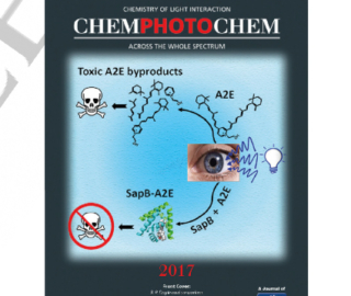 Cover of ChemPhotoChem - peer reviewed journal